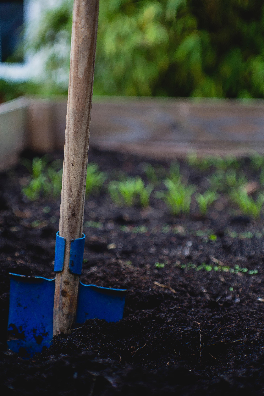 """Predavanje """"Što sve može moj mali vrt"""" - poziv"""