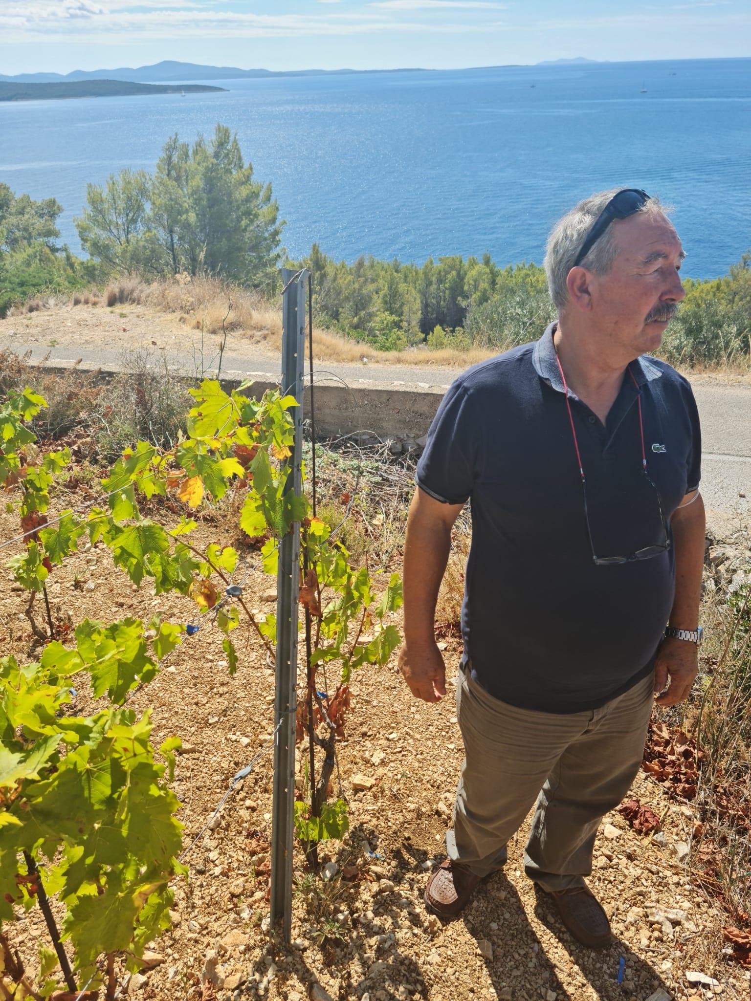 OPG CARIĆ ANDRIJA - kupnja poljoprivredne mehanizacije i sadnja vinove loze