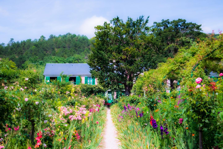 photographie avec une maison en fond entourée de fleurs colorées et d'herbe