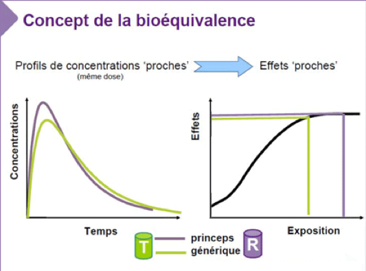 Concept de la bioéquivalence