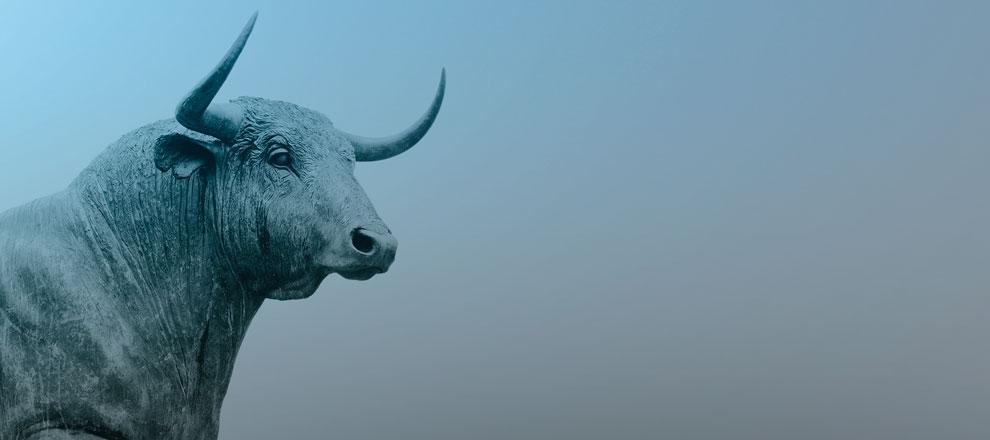 Bull market e Bear market: Conheça os conceitos