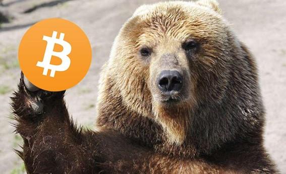 Urso segurando um bitcoin