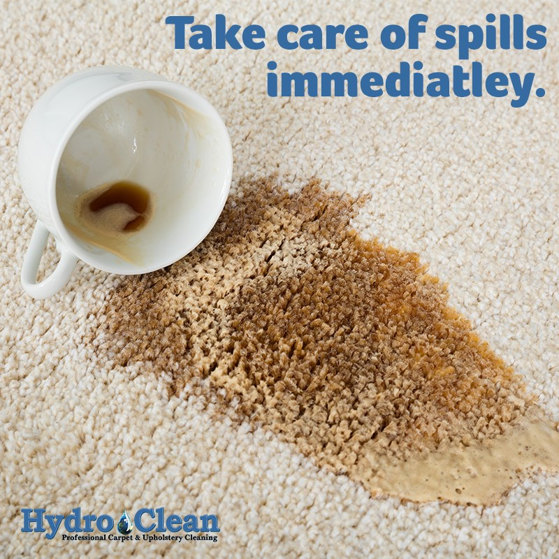 Clean your carpet image