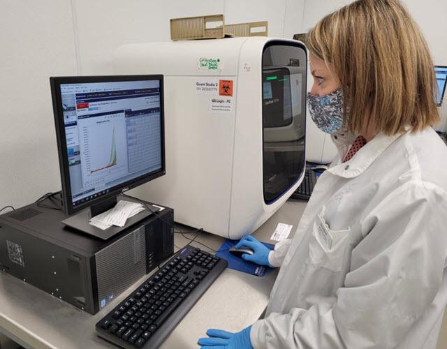 The specialist checks the laboratory's reports