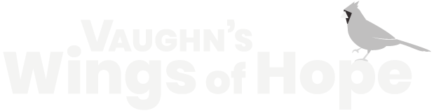 vaughns wings of hope icon