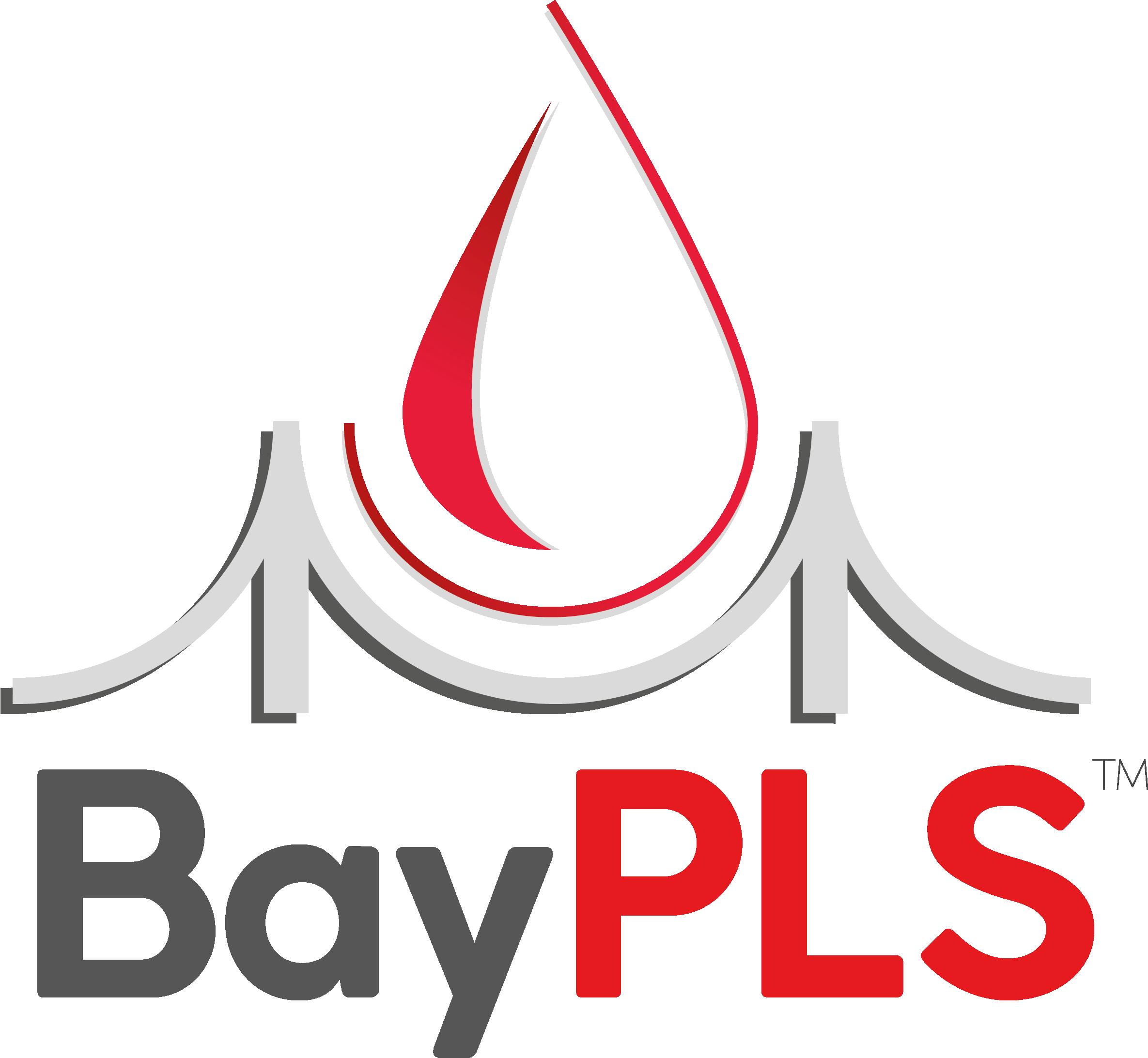 BayPLS logo