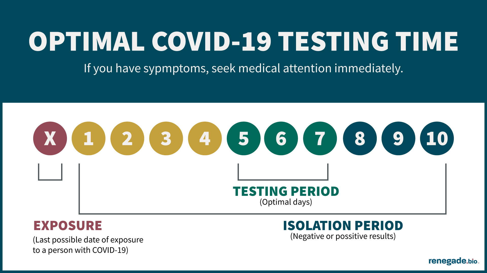 Infographic of optimal COVID-19 testing period