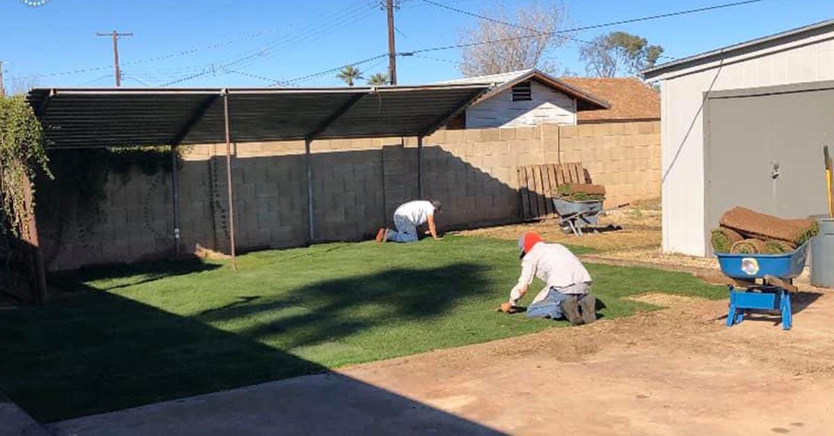 Phoenix Sod Installation Services