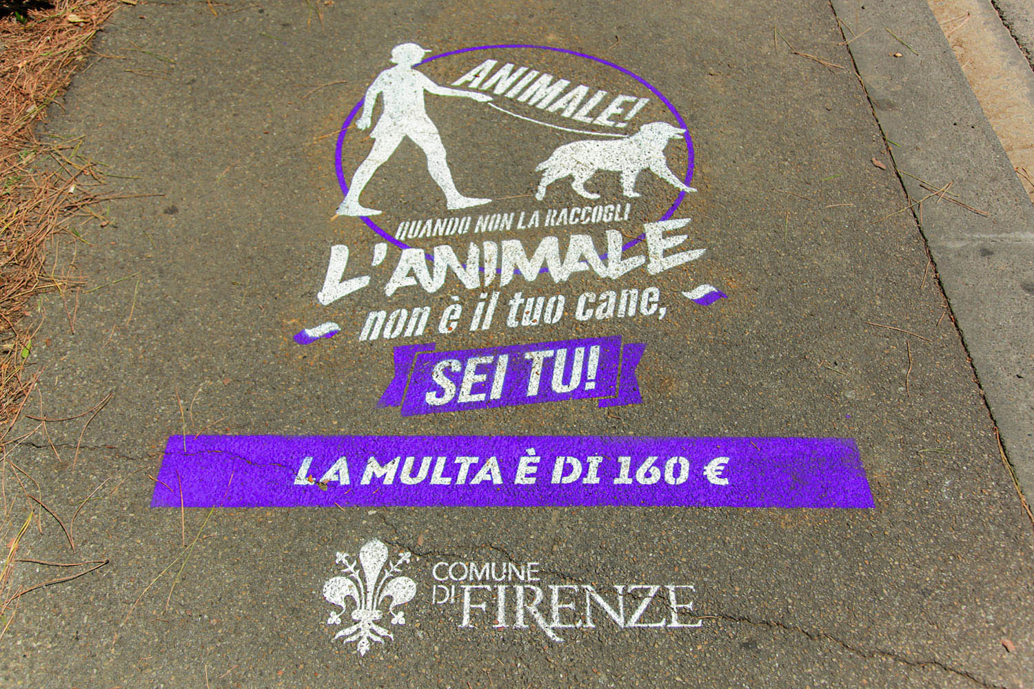 outdoor advertising comune di firenze