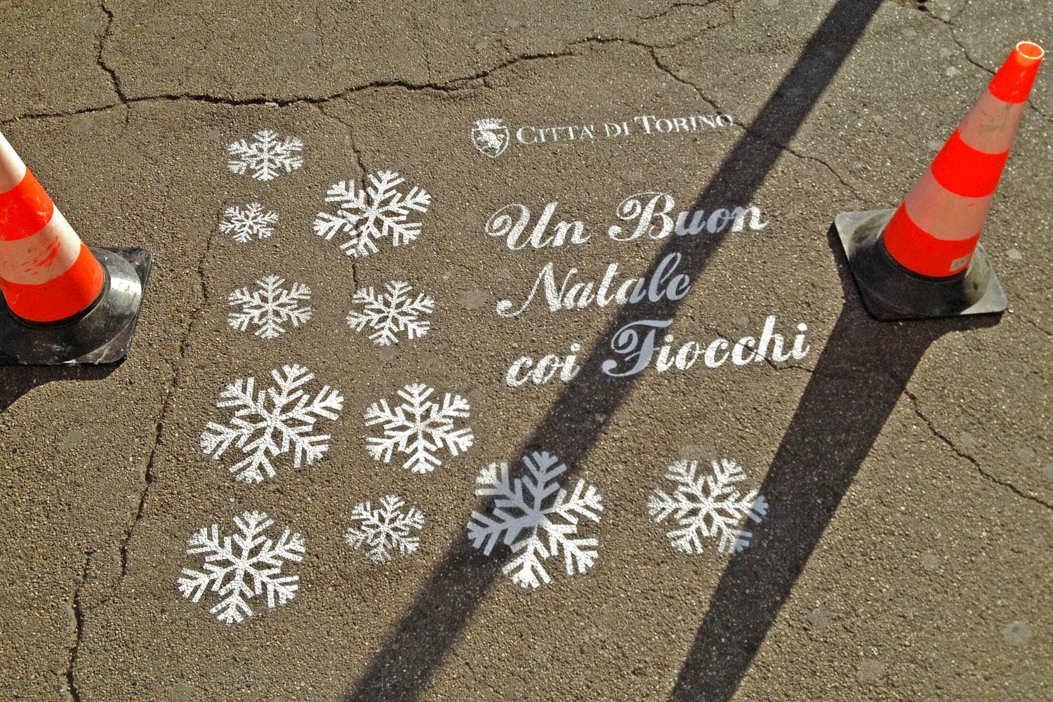 street marketing torino