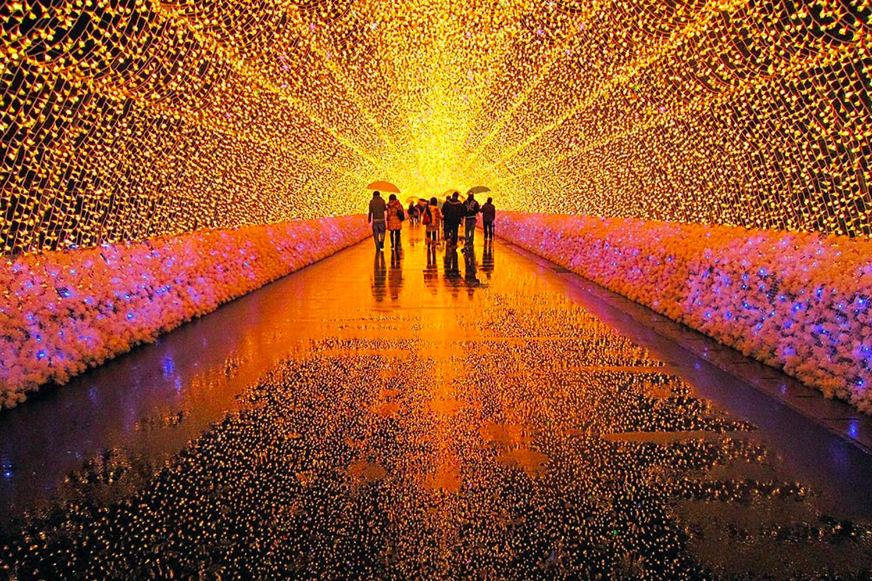 Nabana No Sato Christmas
