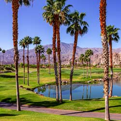 Courier Service Palm Springs