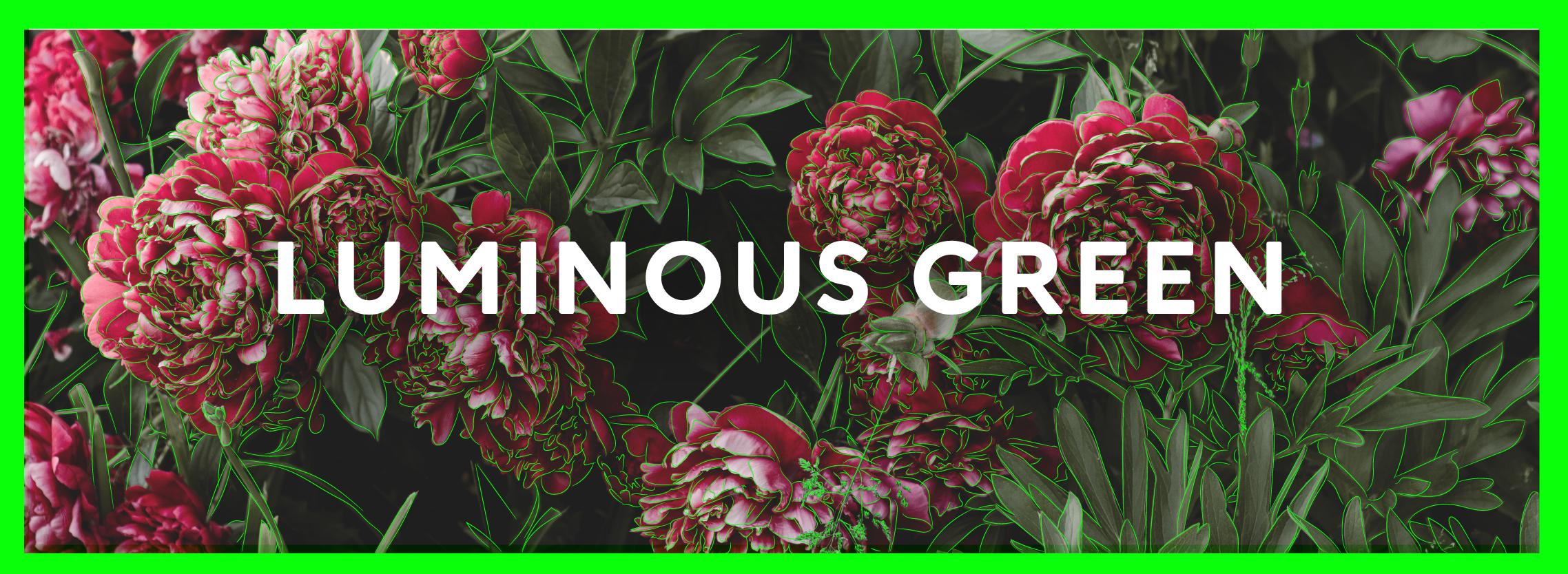Icon for luminous green
