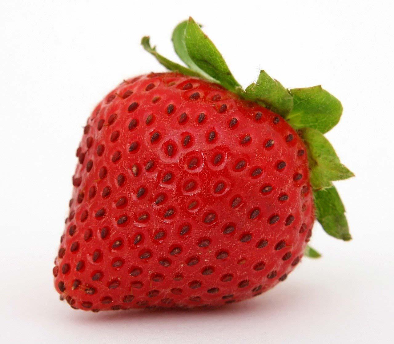 Exemple fraise pour SEO