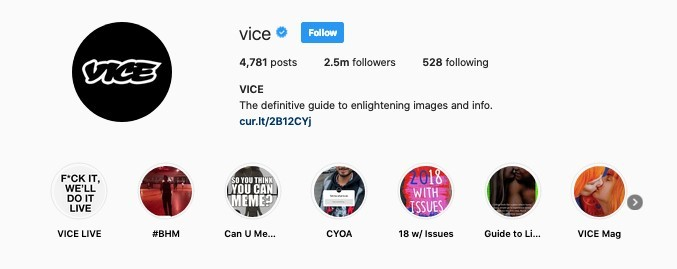Instagram Bio Example - Vice