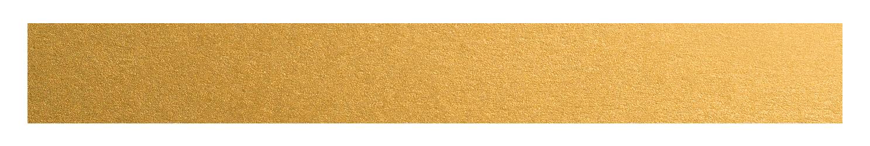 Forestville RSL Club Star Rewards Logo