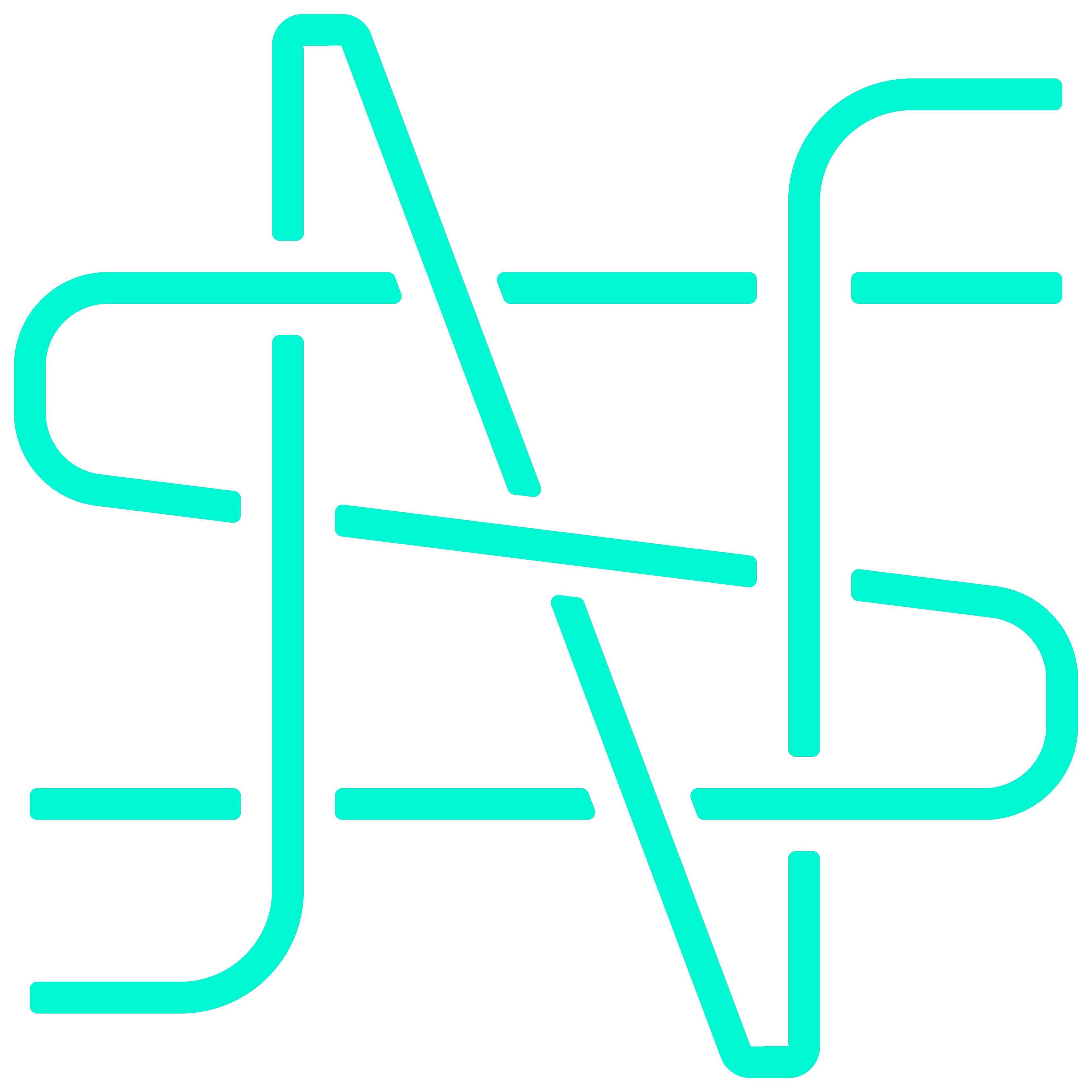 NS Monogram
