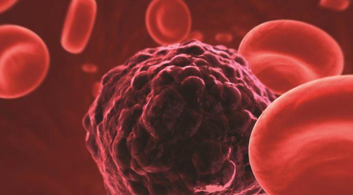 Good human tissue_BioStem Technology