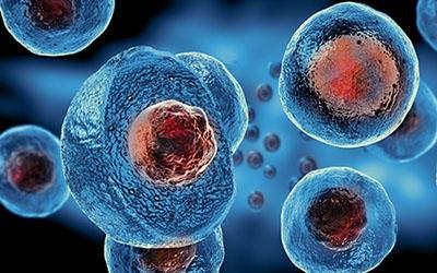 Embryonic Stem Cells_BioStem Technology