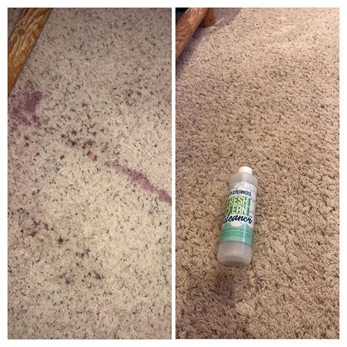 carpet protection review