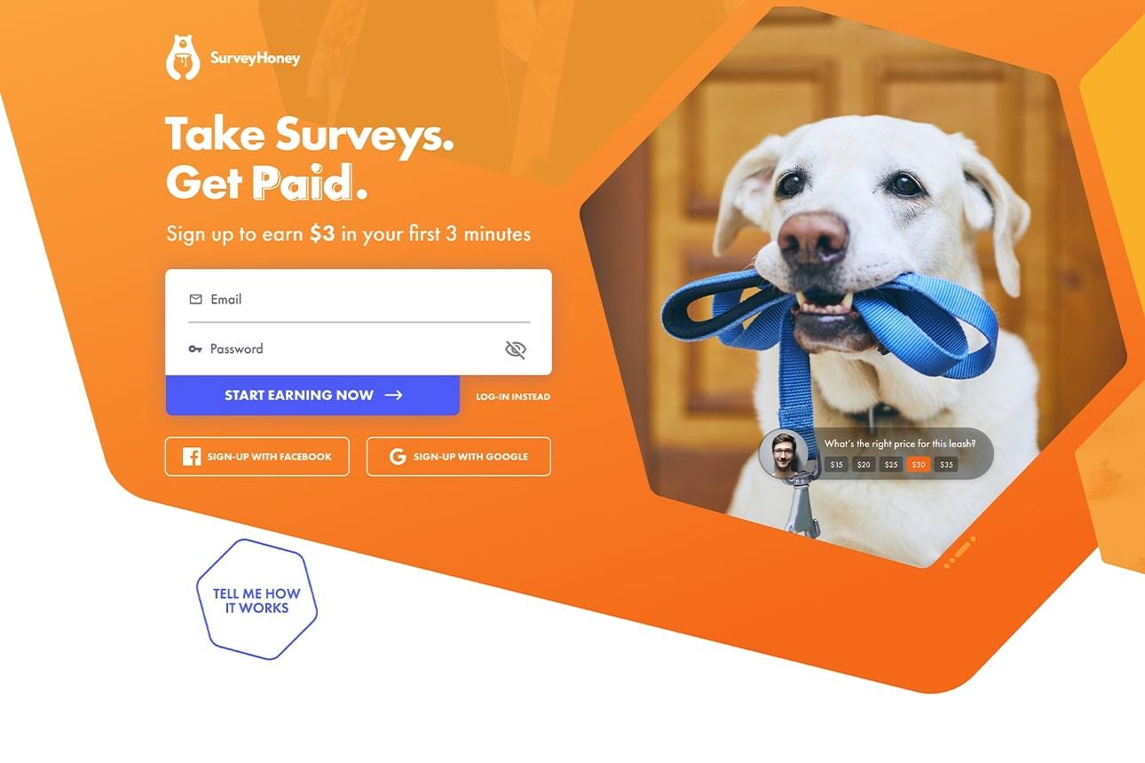 Diseño web del carrusel de la sección hero de Surveyhoney mostrando un perro.. Diseño por El Patio Webflow Studio.