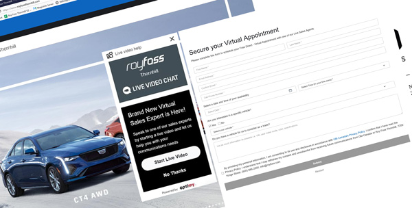 Screenshot of Video Appointment Screen