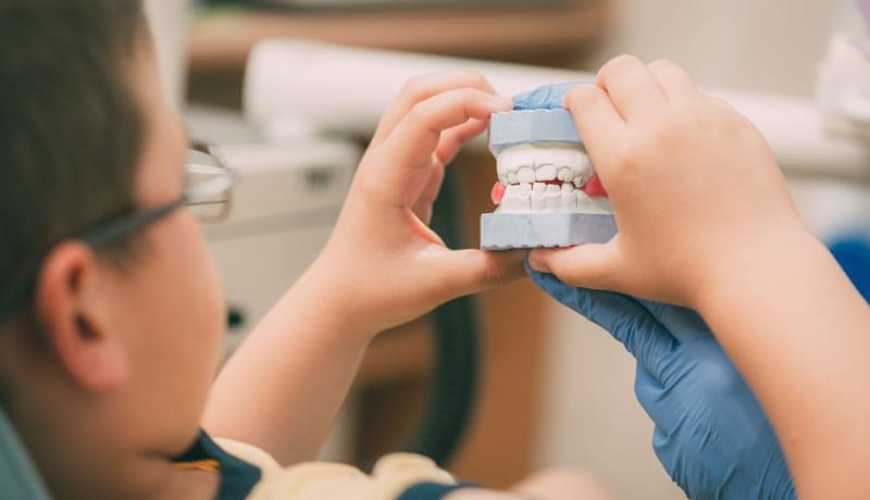 child holding teeth model