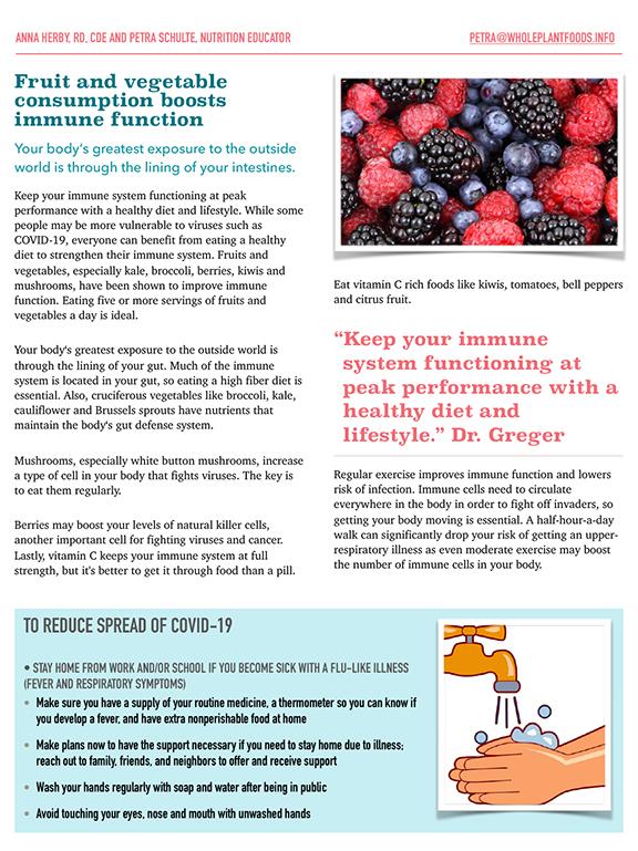 Boost Immunity Flyer English