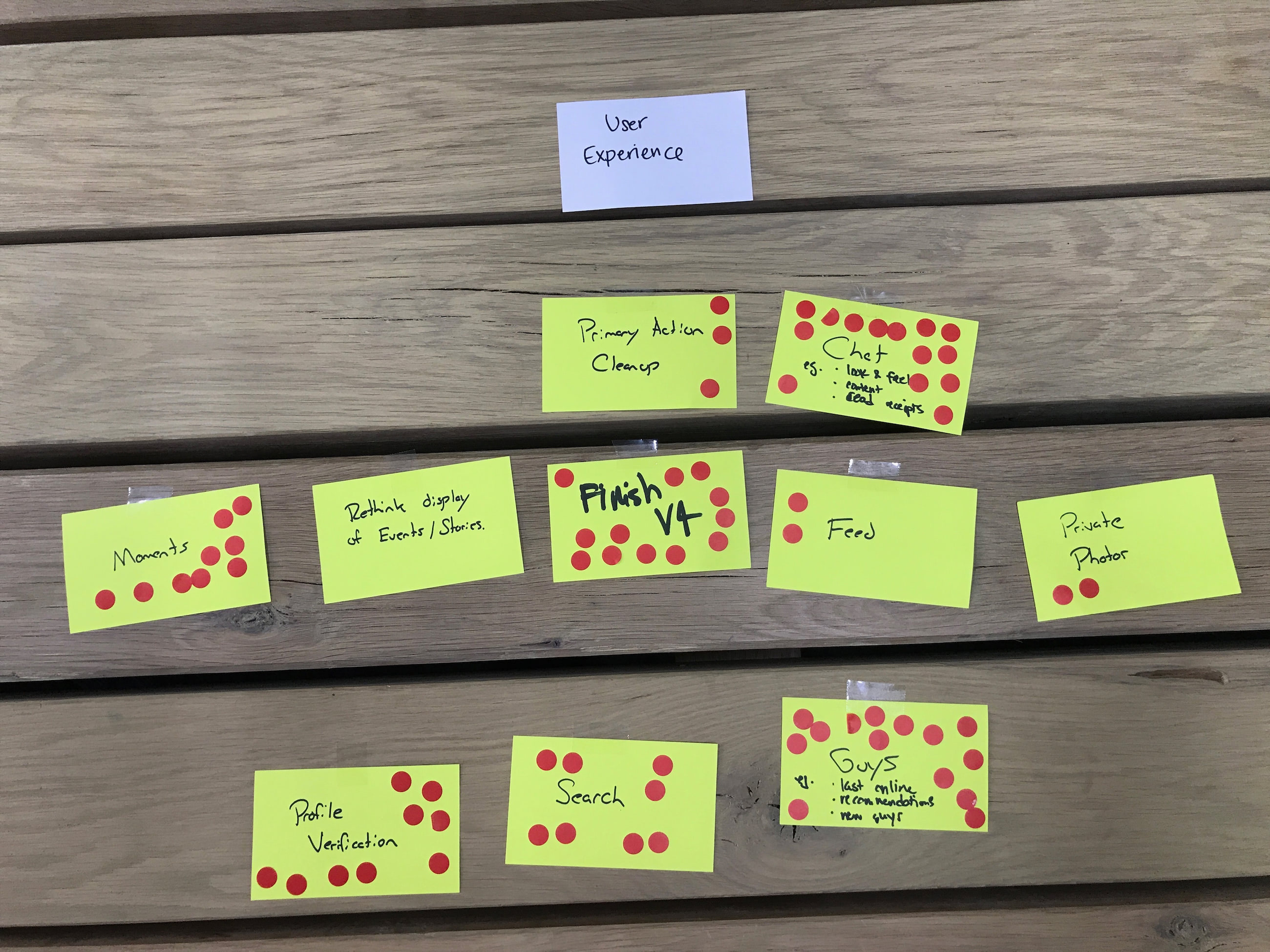 Agile inception dot voting results.