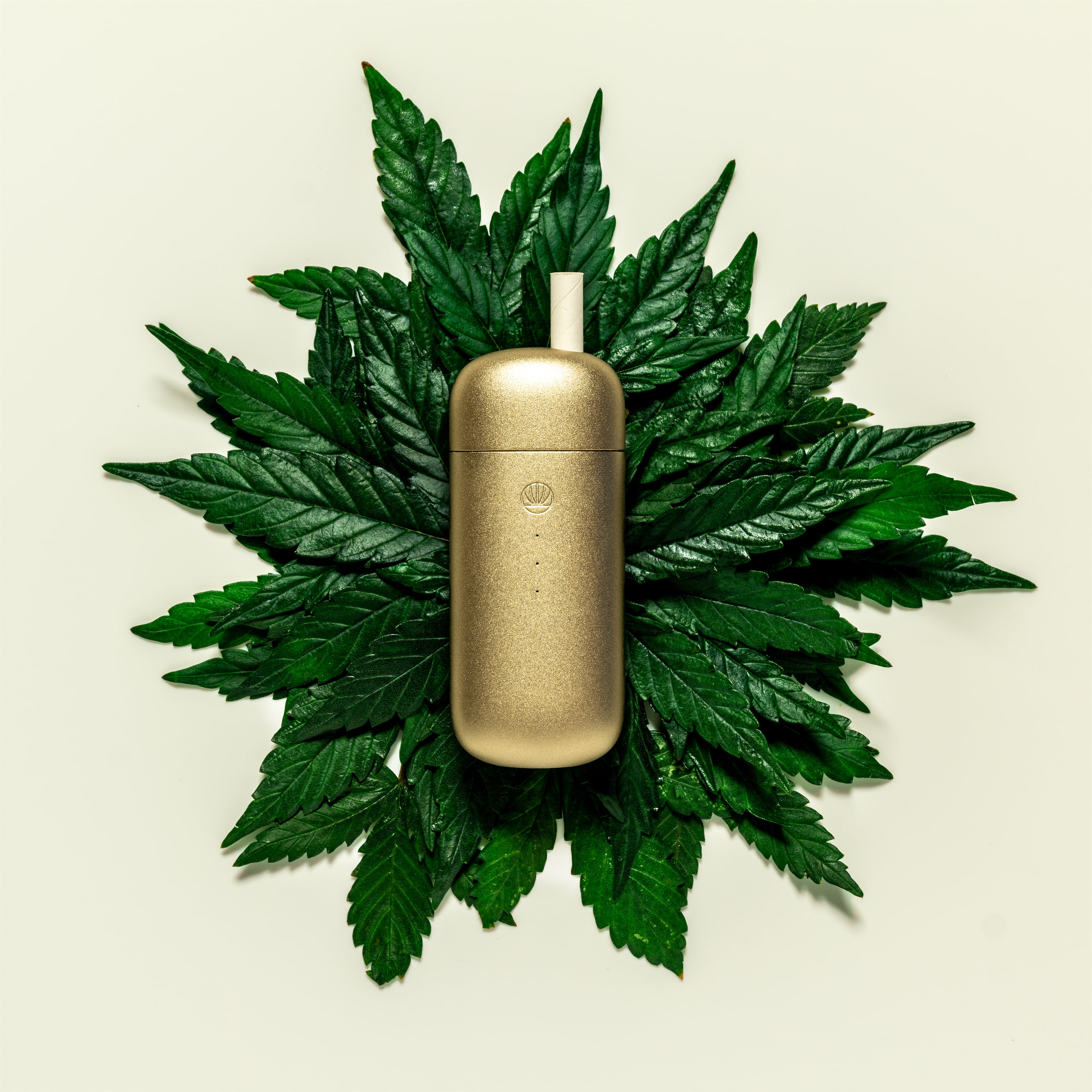 Omura Series X Gold on Cannabis leaves
