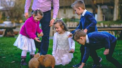 Veselí svatebčané.
