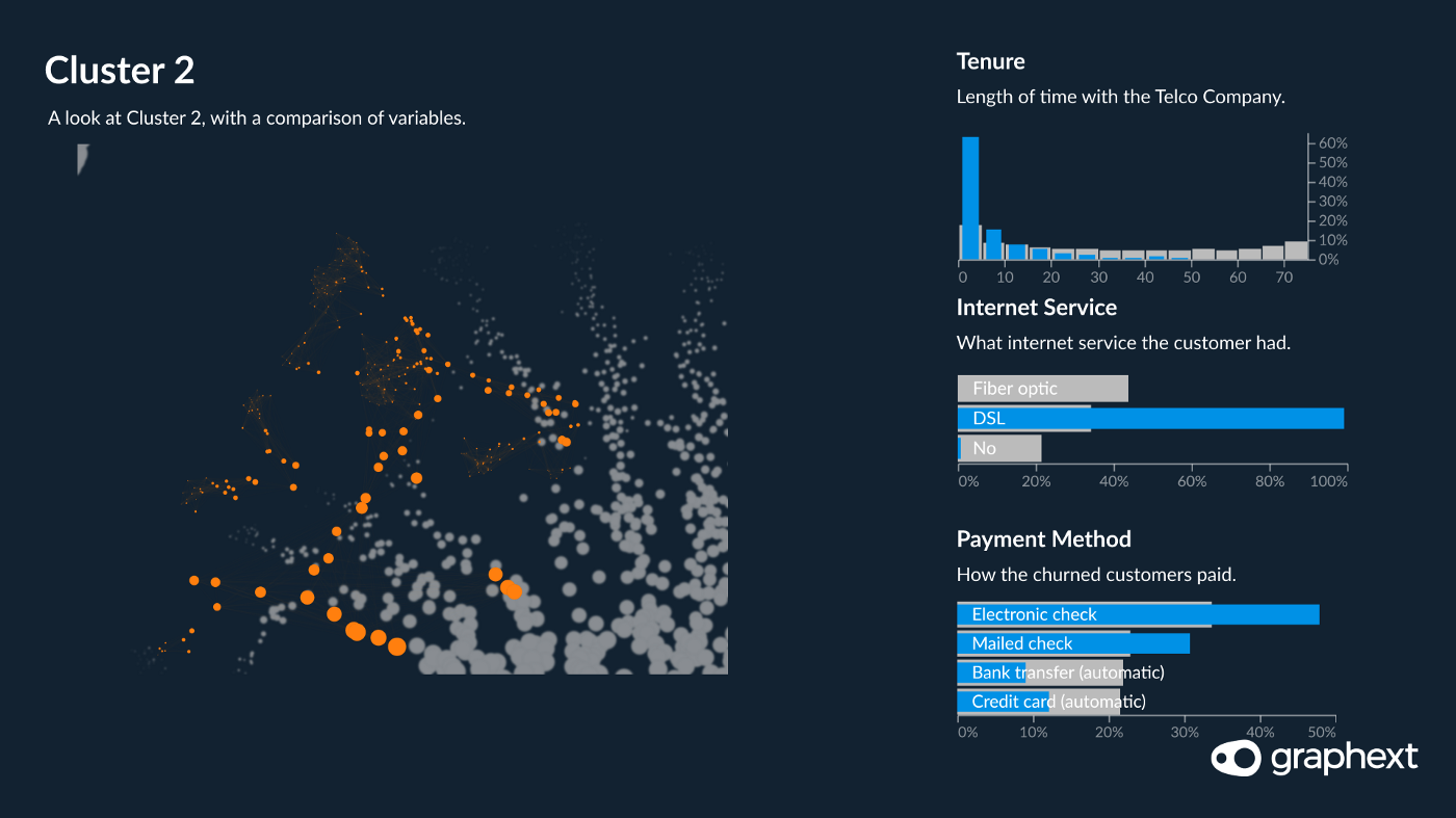 A network visualisation showing that customers in cluster 2 are segmented by tenure and internet service provider.