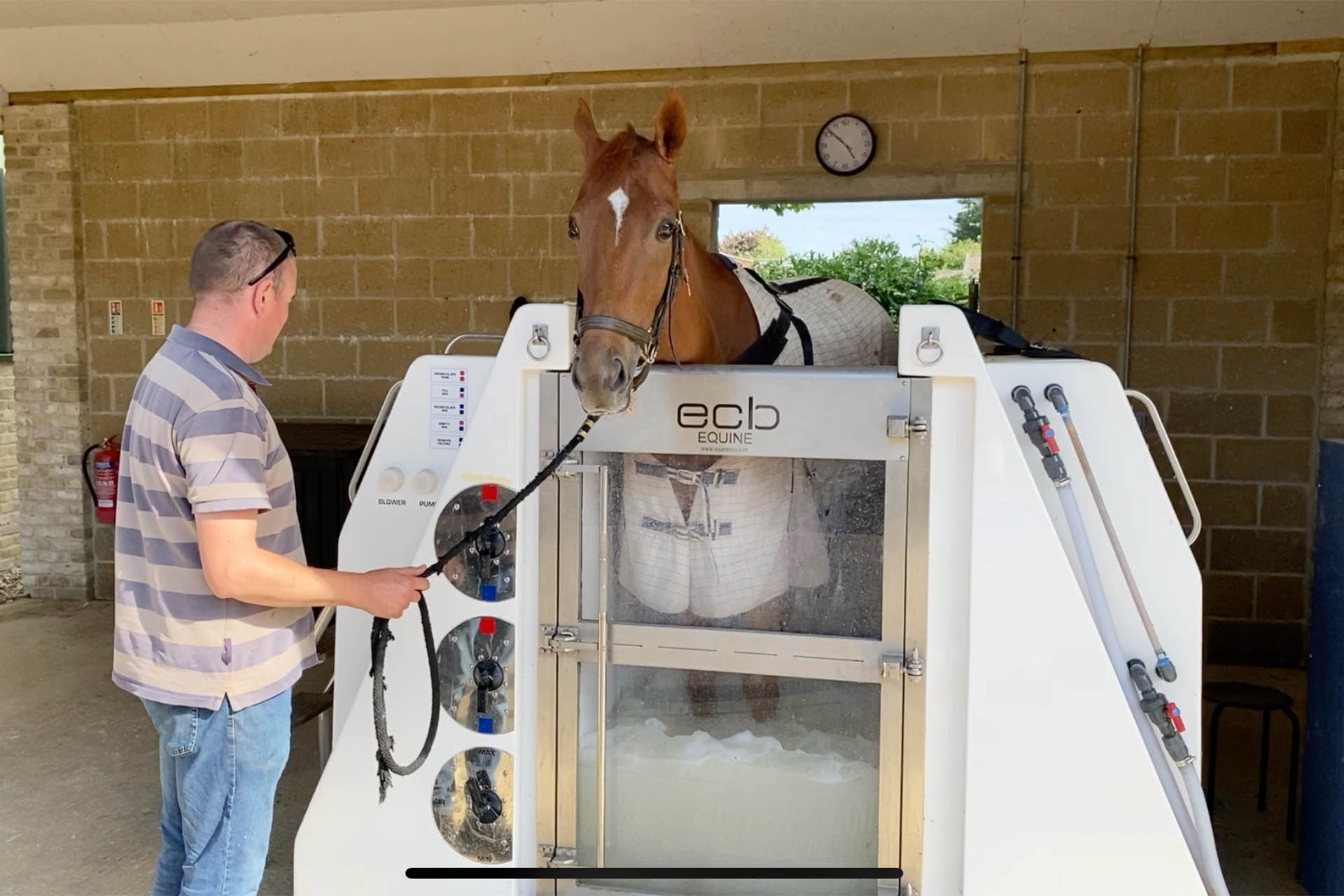 Equine Spa | William Knight Racing