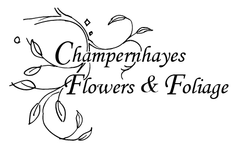 Champernhayes Flowers & Foliage