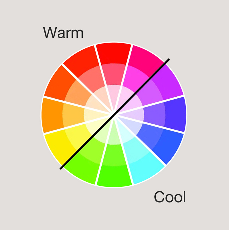A color wheel showing primary, secondary, tertiary, warm and cool colors.