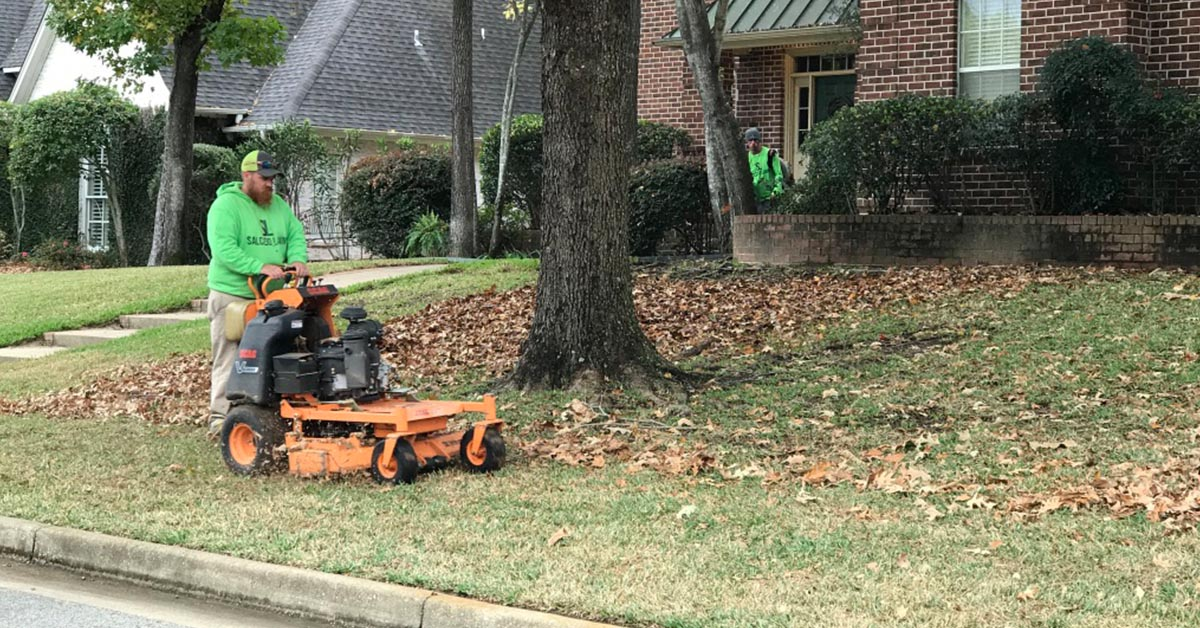 Tyler TX Leaf Removal Service