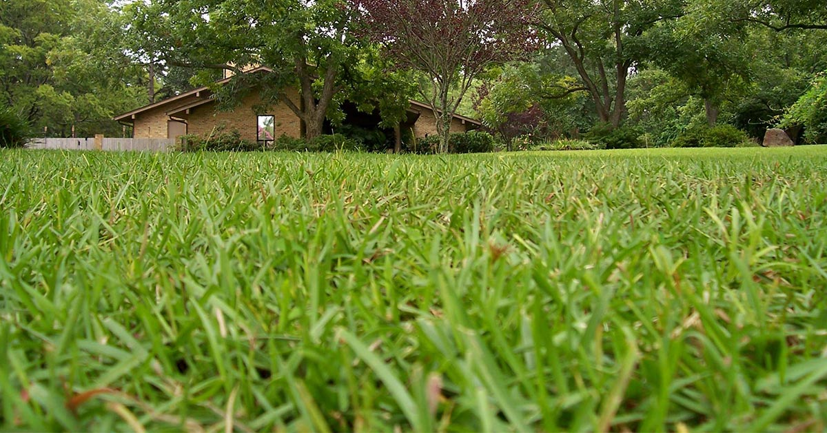 Core Aeration Service In Tyler TX