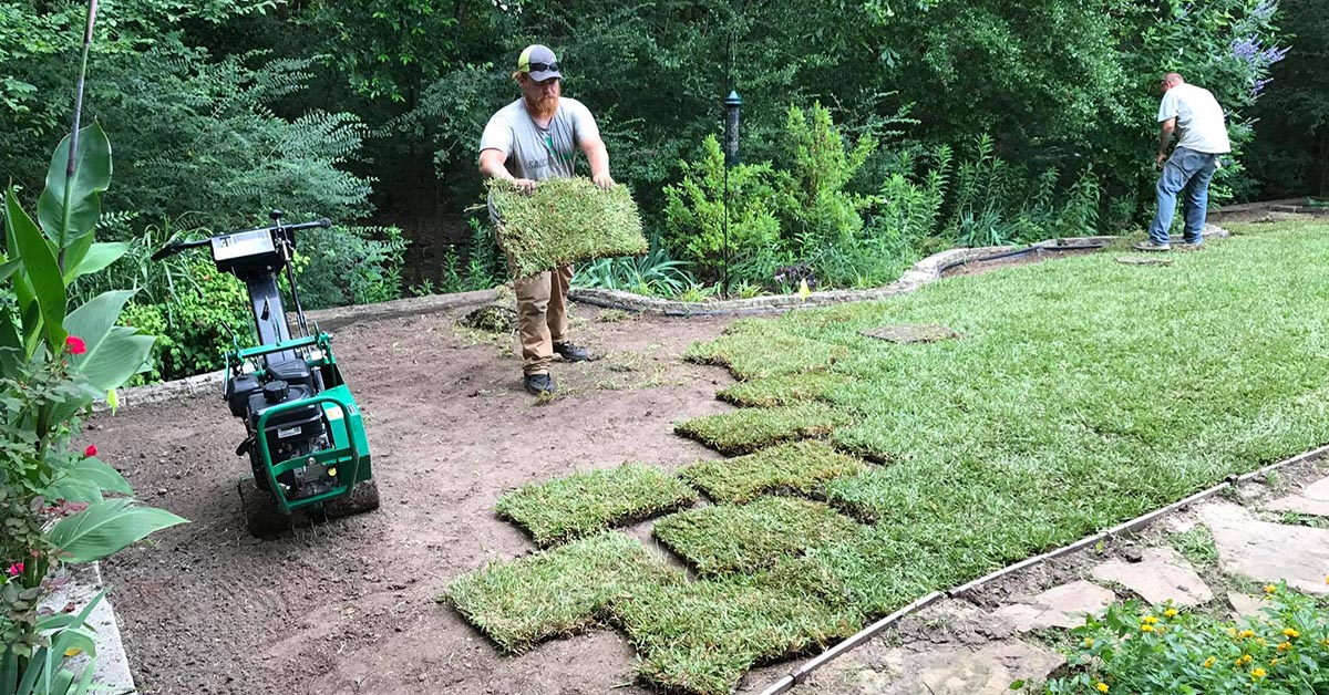 Sod Services In Tyler TX