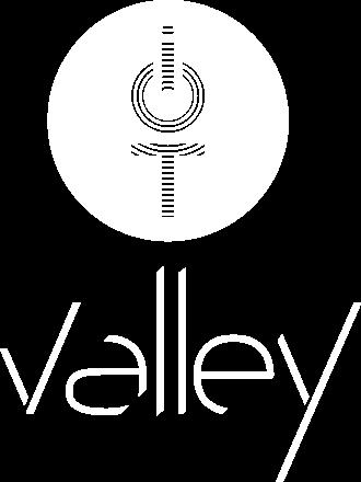 logo iot valley