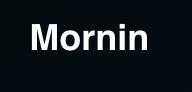 Mornin   An instant audio conferencing service