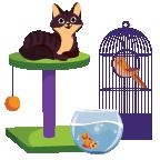 Pet Care Services