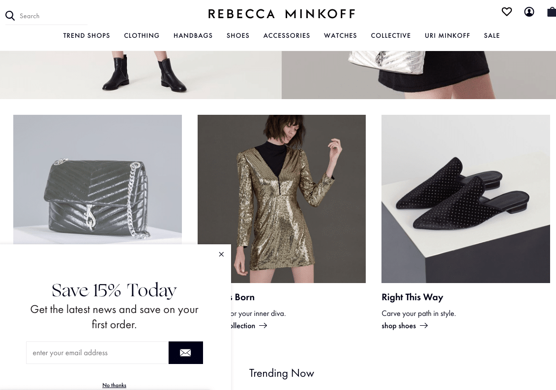 Rebecca Minkoff email opt in form