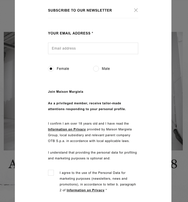 Maison Margiela email opt in form