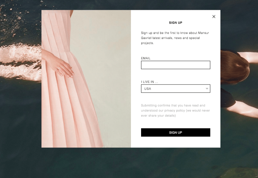Mansur Gavriel email opt in form