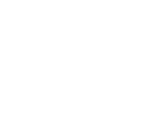 Mr. Crypto Watches