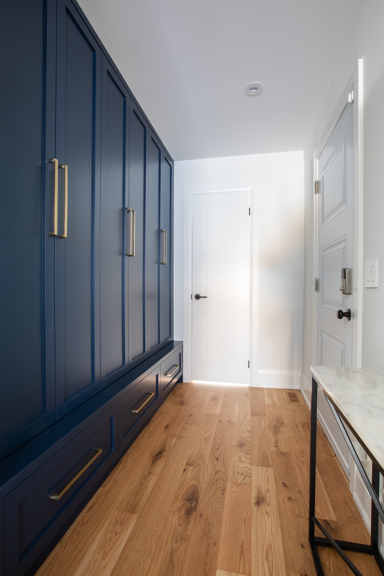 Blue Closet with gold handles