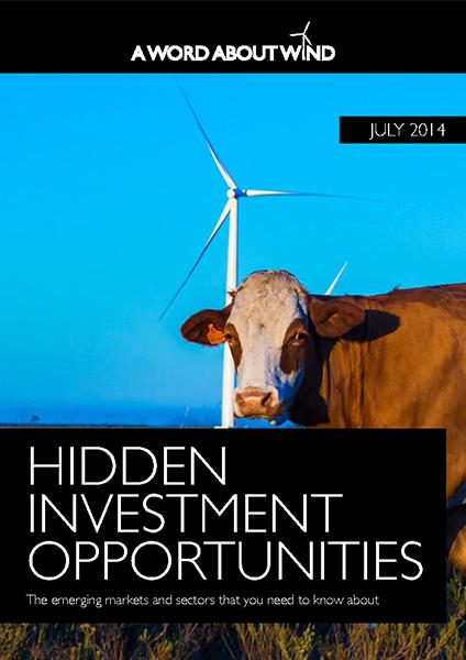 Hidden Investment Opportunities