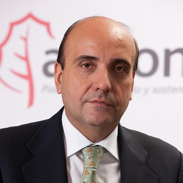 Interview: We meet Acciona Energy's CEO Rafael Mateo