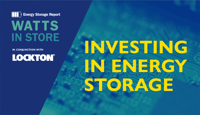 Investing in energy storage