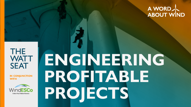 Engineering Profitable Projects